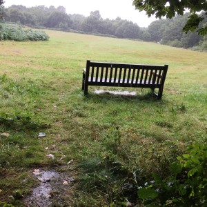 Rain East Common