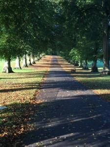 Rothamstead Park
