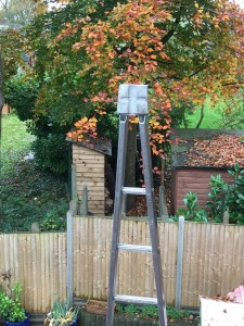 Autumn leaves Harpenden Gutter Cleaning