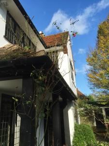 Domestic Window Cleaning Harpenden & St Albans, window cleaning, gutter cleaning, Harpenden St Albans, Hertfordshire