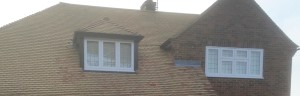 roof clean and window